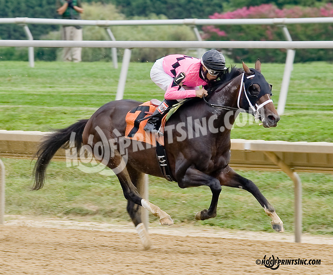 De Bears winning at Delaware Park on 8/30/14