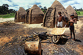 Amazon, Brazil. Two boys with a wheelbarrow in a charcoal making yard with conical charcoal ovens.
