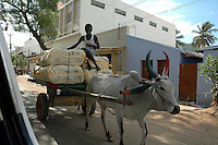 Bullock cart is used to transport raw material in the Textile Valley of TirupurIn Tamilnadu. After lifting of quota system in textile export on 1st january 2005. Tirupur has become the biggest foreign currency earning town of India.