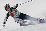 Ski Alpin; Saison 2004/2005 Riesenslalom Soelden Damen Elisabeth Guergl (AUT)