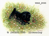 GIORDANO, CHRISTMAS ANIMALS, WEIHNACHTEN TIERE, NAVIDAD ANIMALES, paintings+++++,USGI2093,#XA#