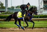 LOUISVILLE, KY - MAY 03: Instilled Regard, trained by Jerry Hollendorfer, exercises in preparation for the Kentucky Derby at Churchill Downs on May 3, 2018 in Louisville, Kentucky. (Photo by Alex Evers/Eclipse Sportswire/Getty Images)