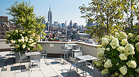 Roof Deck at 175 West 13th Street