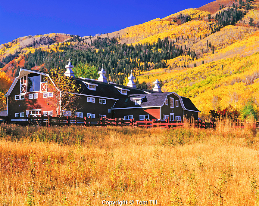 Barn and Fall Aspens, Park City, Wasatch Mountains, Utah