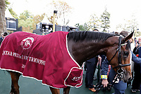 October 07, 2018, Longchamp, FRANCE - Enable after winning the Qatar Prix de l'Arc de Triomphe (Gr. I) at  ParisLongchamp Race Course  [Copyright (c) Sandra Scherning/Eclipse Sportswire)]