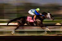 ARCADIA, CA - DECEMBER 30: Donworth #8 with IRad Ortiz Jr. up wins at Santa Anita Park on December 30, 2017 in Arcadia, California. (Photo by Alex Evers/Eclipse Sportswire/Getty Images)