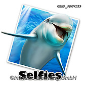 Howard, SELFIES, paintings+++++,GBHRPROV159,#Selfies#, EVERYDAY ,underwater,maritime,dolphins