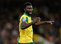 Alexander Tettey of Norwich City during the Barclays Premier League match between Norwich City and Swansea City played at Carrow Road, Norwich on November 7th 2015