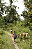 PHILIPPINES, Palawan, Barangay region, hiking through the jungle to visit the Batak people in Kalakwasan Village