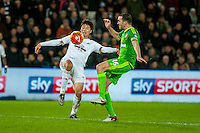Ki Sung-Yueng of Swansea and John O'Shea of Sunderland  in action during the Barclays Premier League match between Swansea City and Sunderland played at the Liberty Stadium, Swansea  on  January the 13th 2016