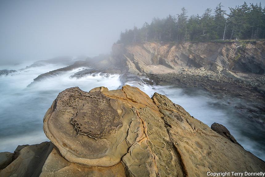 Shore Acres State Park, Oregon:<br /> Sandstone concretions and patterns on the cliffs above the coastline