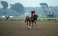 General Assembly (Secretariat), the year he won Saratoga's Travers Stakes. 1979