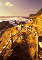 Pathway to beach. Near Yachats, Oregon.