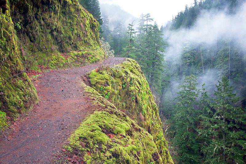 Trail in winter. Eagle Creek. Columbia River Gorge National Scenic Area, Oregon
