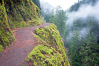Trail in winter. Eagle Creek. Columbia River Gorge National Scenic Area, Oregon