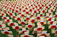 Wooden crosses and poppies in the field of remembrance at Westminster Abbey to commemorate those who have died in battle. Three of the crosses represent members of the Black Watch Regiment who have recently died in Iraq.