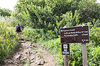 Information and directions sign with hiker at the Pipiwai hiking trail, Haleakala National Park, Kipahulu, Maui