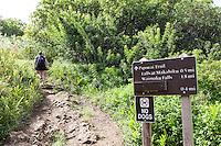 Information and directions sign with hiker at the Pipiwai hiking trail, Haleakala National Park, Kipahulu, Maui