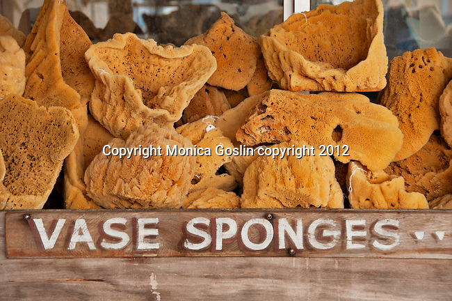 Vase sponges for sale in Tarpon Springs, Florida a town which has the highest percentage of Greek Americans in any US city and which is known for sea sponges