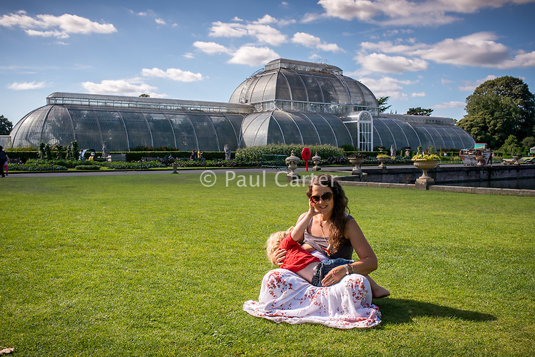 Mother sitting on the grass breastfeeding her two and a half year old boy in front of a Kew Gardens glasshouse.<br /> <br /> Image from the breastfeeding collection of the &quot;We Do It In Public&quot; documentary photography picture library project: <br />  www.breastfeedinginpublic.co.uk<br /> <br /> <br /> Kew Gardens, London, England, UK<br /> 02/09/2013<br /> <br /> &copy; Paul Carter / wdiip.co.uk