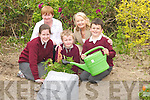 F LOWERS :.Patricia Boyle.(principal) and.Kitty Brassil.(teacher) of.K i l c o n l y.N a t i o n a l.School, Ballybunion,.giving.three of their.pupils a hand.setting flowers.in the late Eoin.Griffins garden..Pupils l-r:.Louise Dineen.and David.H e n n e s s y.(Beale) and.Liam Lawlor.(Trippol).