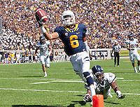 September 1, 2012: California's Chris Harper receives the ball for a touchdown during a game against Nevada at Memorial Stadium, Berkeley, Ca   Nevada defeated California 31 - 24