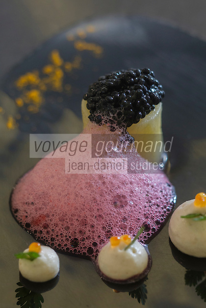 urope/France/Bretagne/56/Morbihan/Lorient: recette de  Jean-Paul Abadie, restaurant: L'Amphytrion