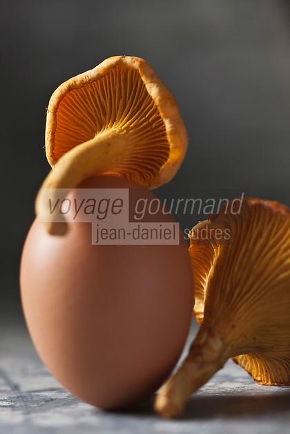 Cuisine/Gastronomie générale: Oeuf et Girolles   - Omelette aux chanterelles