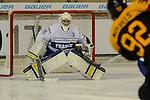 EHWM IIHF 2015