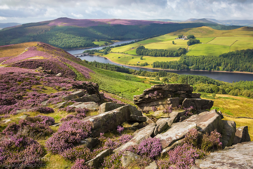 Derwent Edge, looking towards Ladybower Reservoir. Peak District National Park, Derbyshire, UK. August.