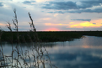 Colorful Florida clouds illuminate a canal at sunset. Photographed at Arthur Marshall Loxahatchee Wildlife Refuge, Boynton Beach, Florida.