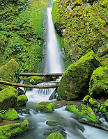 Soda Creek Falls. Cascadia State Park. Oregon.