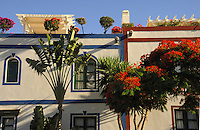 Painted houses and palms at Puerto Mogan, Gran Canaria, Canary Islands, Spain