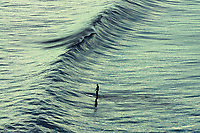 Jan. 25, 2014_San Diego_ California_USA_| A paddleboarder glides over a wave in La Jolla.  | _Mandatory Photo Credit: Photo by K.C. Alfred/UT San Diego/Copyright 2014