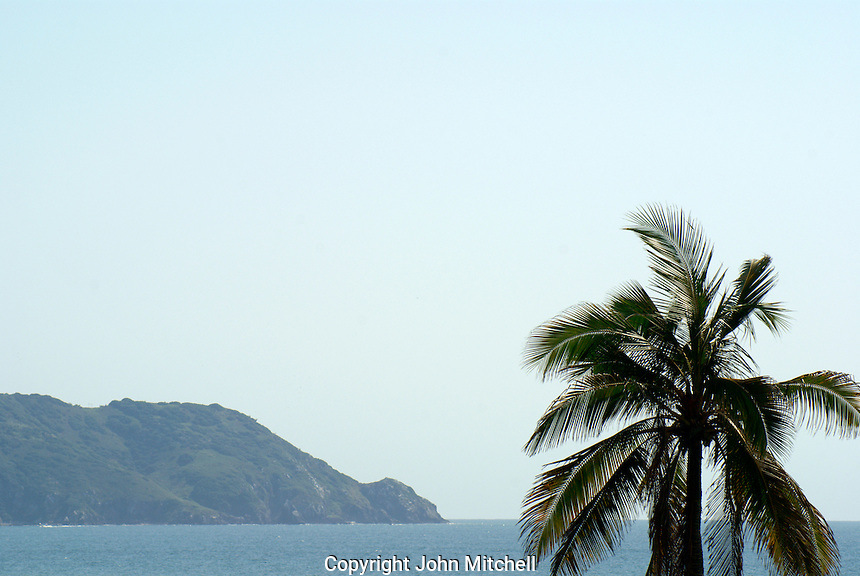 Palm tree, Pacific Ocean, and island,  Mazatlan, Sinaloa, Mexico