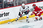 January 5, 2010: Wisconsin Badgers Anne Dronen (6) defends against USA Hockey Hilary Knight (21) during an exhibition women's hockey game at the Kohl Center in Madison, Wisconsin on January 5, 2010.   Team USA won 9-0. (Photo by David Stluka)