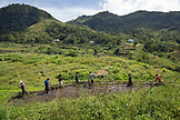 INDONESIA, Flores, residents of Waturaka Village prepare their fields to plant rice
