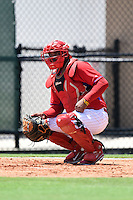 GCL Phillies third baseman Jesus Posso (9) warms up the pitcher in between innings during a game against the GCL Pirates on June 26, 2014 at the Carpenter Complex in Clearwater, Florida.  GCL Phillies defeated the GCL Pirates 6-2.  (Mike Janes/Four Seam Images)