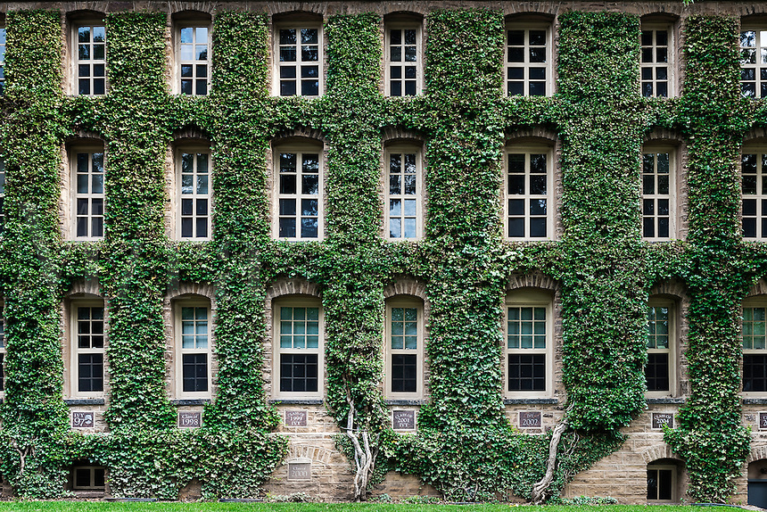 Nassau Hall ivy, Princeton University Campus, Princeton, New Jersey, USA