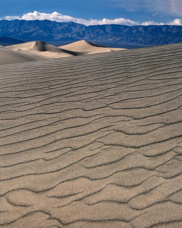 Sunrise light on sand dunes; Death Valley National Park, CA