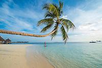 Maldives, Rangali Island. Conrad Hilton Resort. Woman on paddle board. (MR)