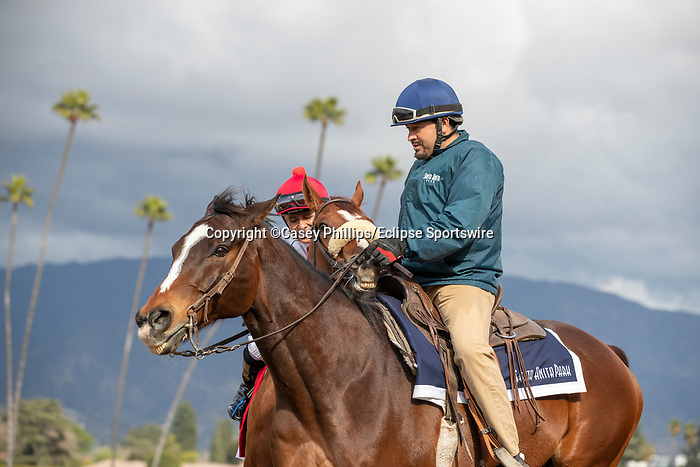 ARCADIA, CA  FEBRUARY 22: #1 Jolie Olimpica, ridden by Mike Smith, acts up in the post parade of the Buena Vista Stakes (Grade ll) on February 22, 2020 at Santa Anita Park in Arcadia, CA.  (Photo by Casey Phillips/Eclipse Sportswire/CSM)