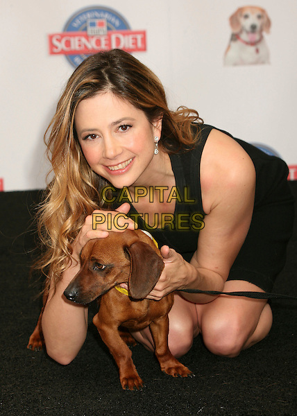 "MIRA SORVINO .Hill's Science Diet ""Second Chance for Love"" Campaign Press Conference at the 3rd Street Promenade, Santa Monica, California, USA..May 18th, 2007.full length dress kneeling black dog animal .CAP/ADM/BP.©Byron Purvis/AdMedia/Capital Pictures"
