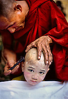 Yangon, Myanmar 2005 . Monk getting head shaved, rangoon, Burma, 2005