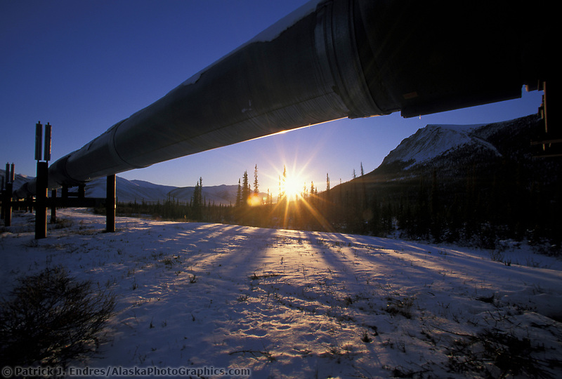 The trans Alaska oil pipeline stretches across the snow covered tundra, Brooks Range, Arctic, Alaska.