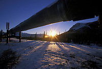 The trans Alaska oil pipeline stretches across the snow covered tundra, Brooks Range, Arctic, Alaska.