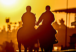 October 28, 2019 : Scenes from preparations for the Breeders' Cup at Santa Anita Park in Arcadia, California on October 28, 2019. Scott Serio/Eclipse Sportswire/Breeders' Cup/CSM