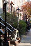 Townhouses in Chelsea, a neighborhood in New York City.