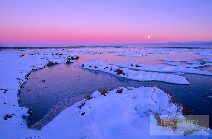 Snow covered, frozen Salt Marsh, Stone Harbor, New Jersey