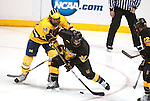 March 26,  2011                     Michigan forward Chris Brown (10, left) and Colorado left wing Tim Hall (23) struggle for the puck in the third period, near the Colorado goal. The University of Michigan defeated Colorado College 2-1 in the championship game of the NCAA Division 1 Men's West Regional Hockey Tournament, on Saturday March 26, 2011 at the Scottrade Center in downtown St. Louis.